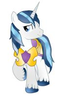 Shining Armor by Sparkle-Space