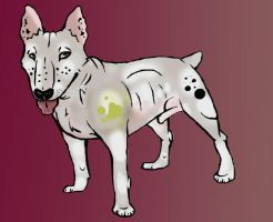 ADOPT A Bull-Terrier by Late-Night-Cannibals