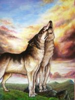 Wolf couple by Bisanti