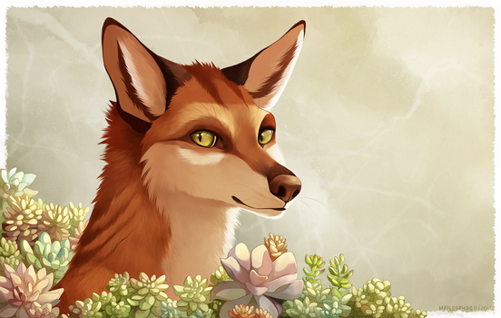 Succulent Fox by MapleSpyder