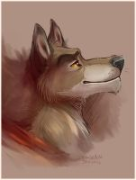 Balto by SilverDeni