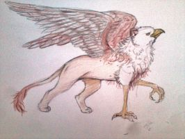 griffin too kiwiki24 by Crazywolfs