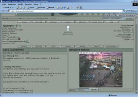 TwinWare s 1000th pageview by twinware