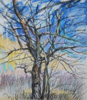 Untitled color tree scetch by LusiusMalfoy