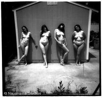 Four Body Types by Catwoman69y2k