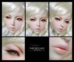 Face-up: Soom MD Cuprit by tr3is