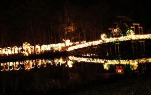 Festival Of Lights by ErinM2000