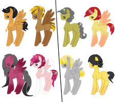 Colts for sarahhostervig by HeartRoyali