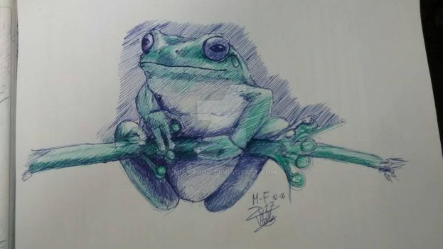 ballpoint pen frog by miss-frog