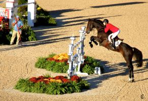 Show Jumping 4 by ZyzzyvaRox