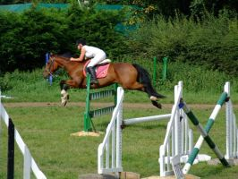 3ft3 Sharktooth Planks Unaffliated Show Jumping by StarCrossedPsycho
