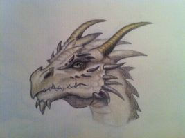 Dragon by Deathangirl