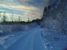 Winter road by Angelov-net