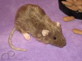 Light Brown Rat Plushie by Morumoto