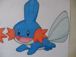 Mudkip V3.1- Colour by sazmullium