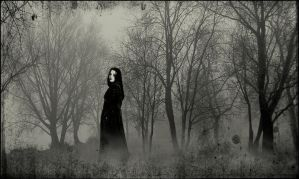 Her Ghost in the Fog by BlackWhite-Orchid