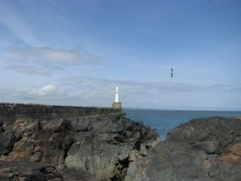 Places 690 Lighthouse and rocks by Dreamcatcher-stock
