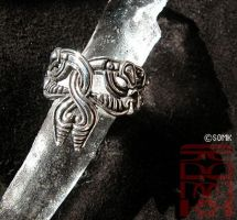 Viking ring - Seals (Daily Deviation) by somk