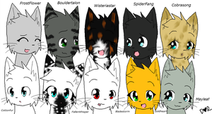 ThunderClan :3 by Frozen-x-Rain