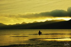 ...A Golden Sunrise... by ditya