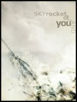 Skyrocket Of Me And You [P1] by dissektion