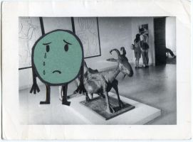 Museo Picasso de Antibes 1984 by Velica