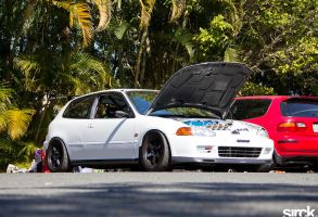 Track Civic by small-sk8er