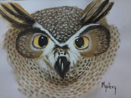 Oehoe Owl Waterpaint Painting by MarieMystery