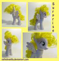 Surprise Custom by SaltedVanilla