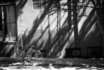 Engulfed in the Shadows by afro-azin
