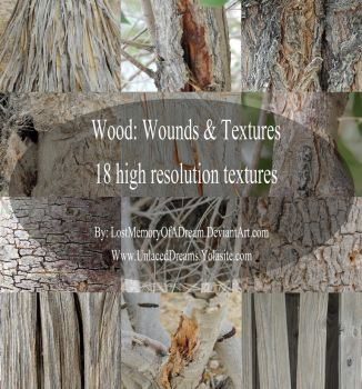 Wood: Wounds and Textures by LostMemoryOfADream