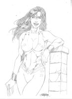 Classic Donna troy by JeanSinclairArts
