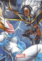 Snowbird vs. Storm, MHV by Dangerous-Beauty778