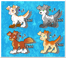 VERY CHEAP Pup adopts ! (CLOSED) by AR-ameth