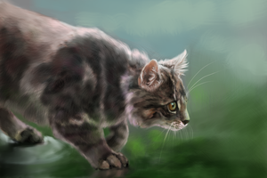 'Wet Paws' Speedpaint by Di-Ess