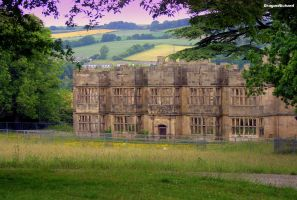 Gibside Hall by DragonRichard
