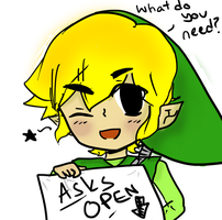 Ask Toon Link! by To0nLink