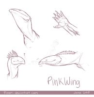 PinkWing sketches by Floeur