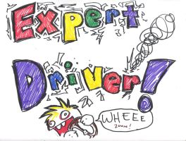 EXPERT DRIVER by slithercat