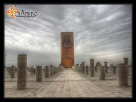 Hassan II by EmAmine