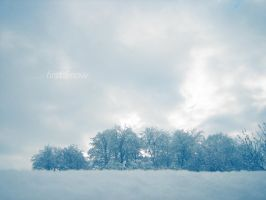 ... first Snow by love1008