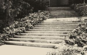 Stairs by Parabolola