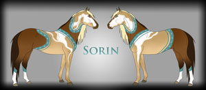 Sorin Ref by Drasayer