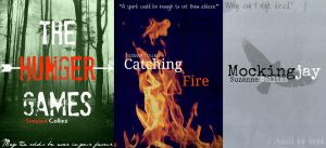 The Hunger Games Covers by ClockworkShadows