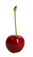 cherry_stock2_png by Susannehs