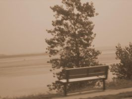Lonely Bench by Madnessofthewolf
