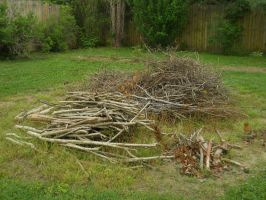 Stick Pile Stock 1 by Orangen-Stock