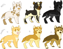 adoptables - mutts and shibas by fqs