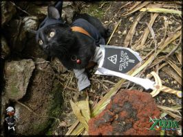 TLoZ Four Paws: Dark Link by CyanideKandies