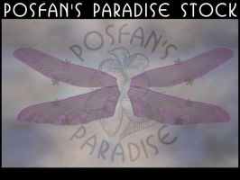 Dragonfly Wings 005 by poserfan-stock